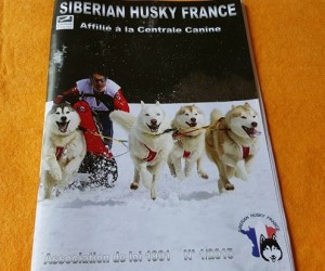 En couverture du Siberian Husky France magazine